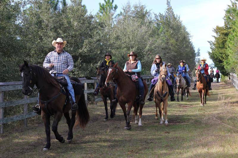Riders head into the Florida Agriculture Museum for the Great Florida Cattle Drive Reunion Tour