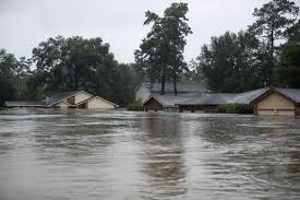 A few houses submerged in water.