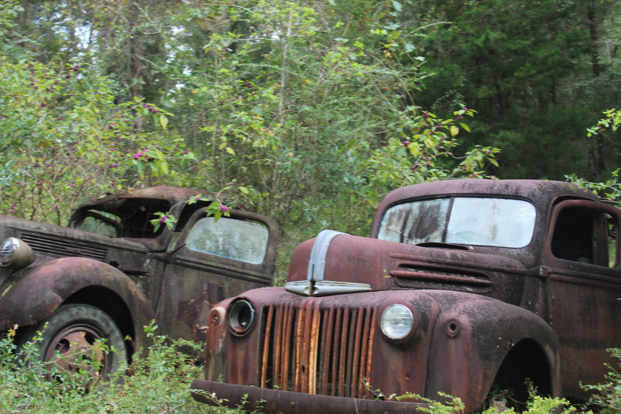 Harvey Trucks Take Visitors For A Ride Into The Past | WFSU