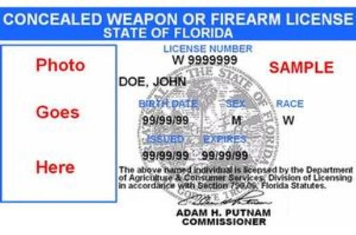 Concealed Weapon Application Status Check, Division of ...