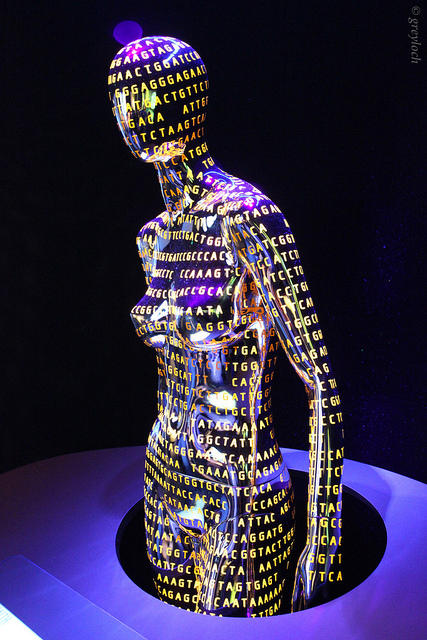 A mannequin on display at the Smithsonian Museum of Natural History in Washington, DC