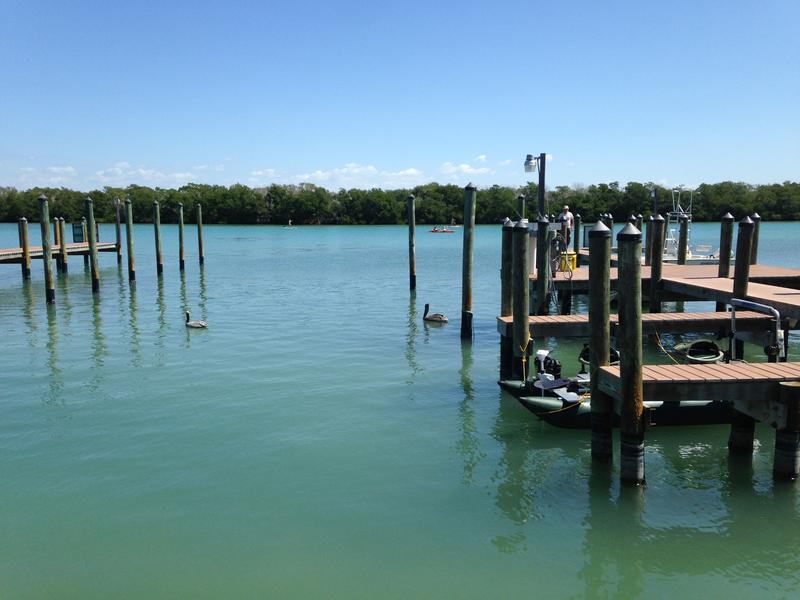These docks are all owned by Weston's WannaB Inn in Englwood off of Lemon Bay. The resort pitched in half the funding for this initial project and is housing the mangroves just a few feet from the docks.