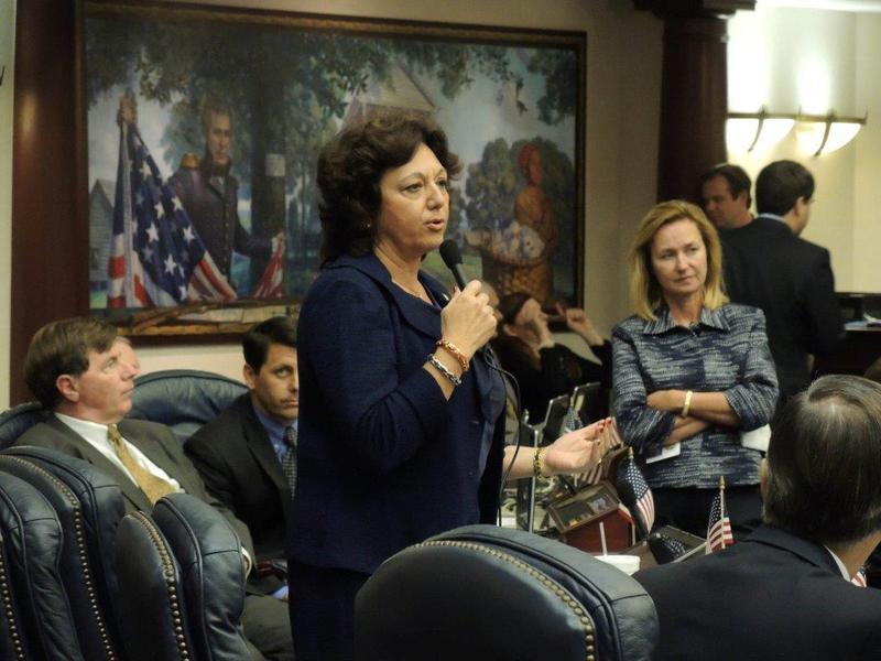 Passidomo on the floor of the Florida House of Representatives. She served in the House from 2010 to 2016.