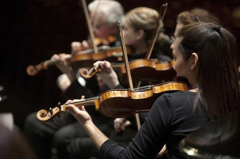Musicians with the Southwest Florida Symphony