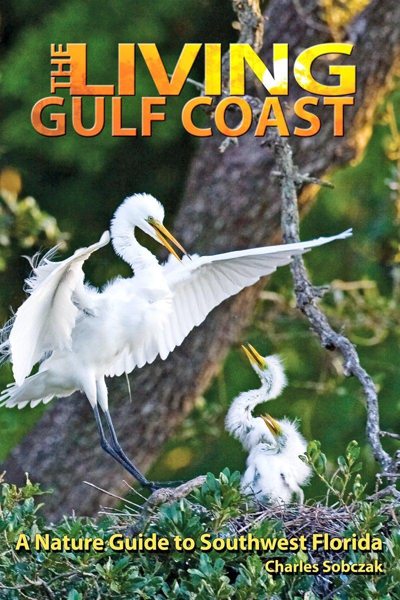 The Living Gulf Coast book cover