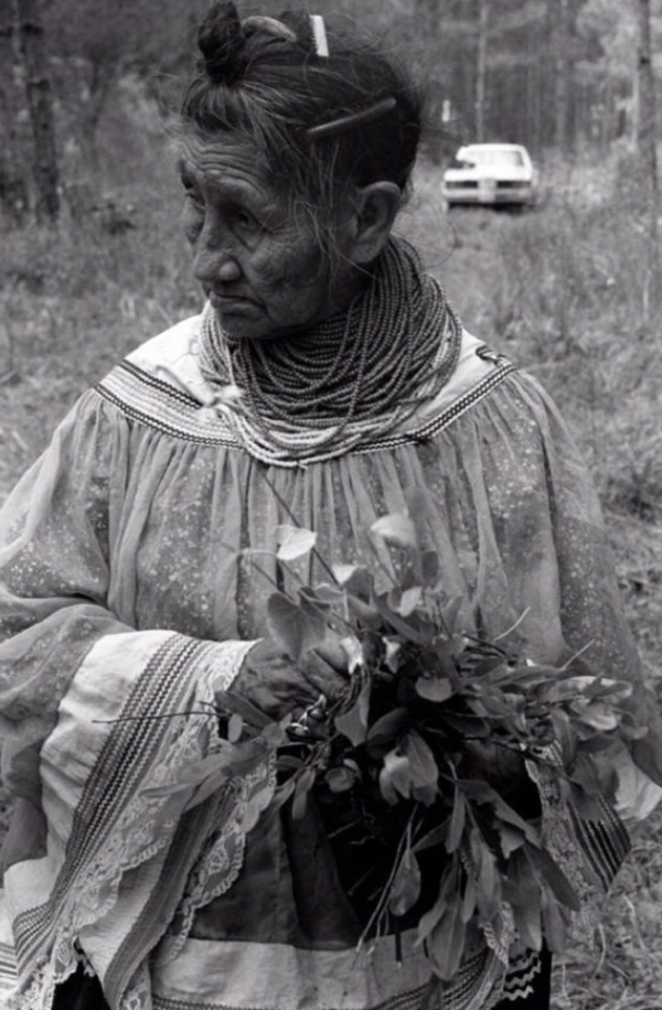 SUSIE BILLIE - A Miccosukee Indian healer with medicinal plants.