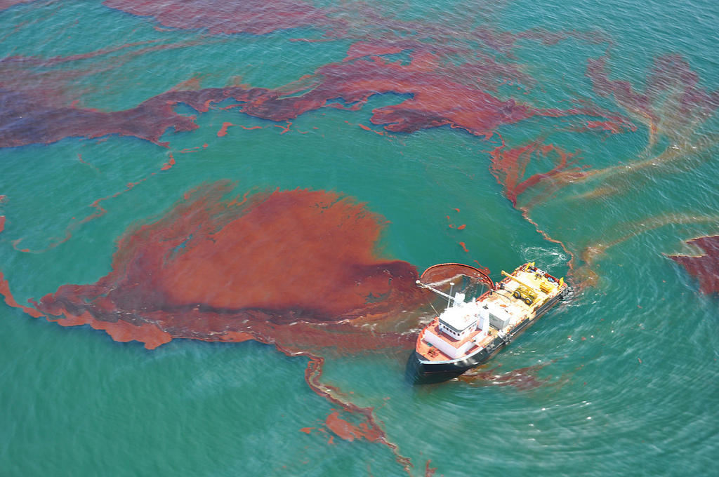 seven years after deepwater horizon florida researchers assess