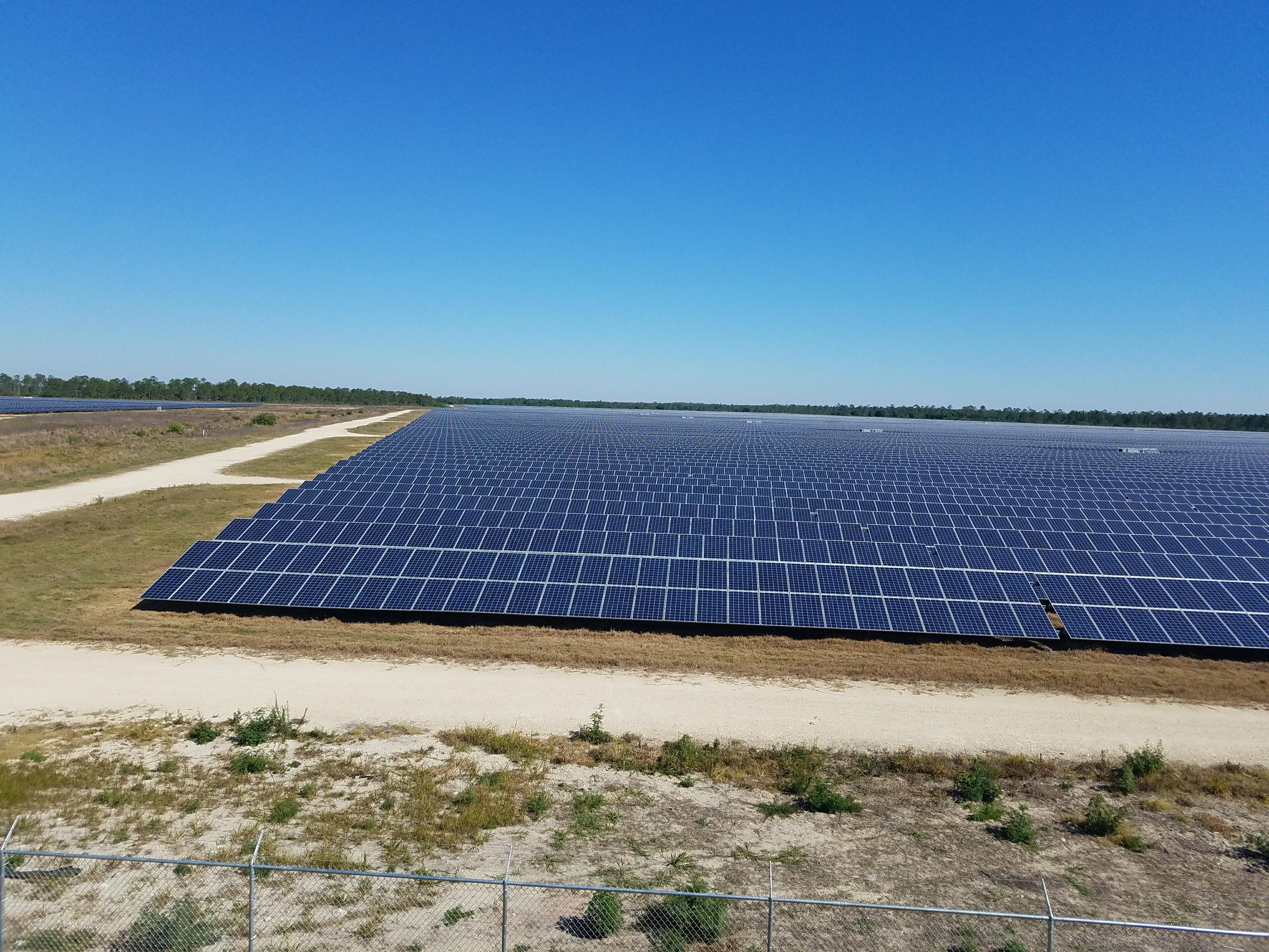 A Glimpse Of FPLu0027s 440 Acre Solar Field In Punta Gorda.