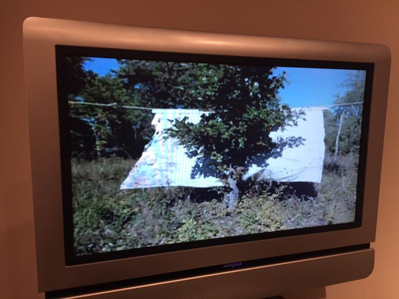 DeWitt's work also incorporates video.