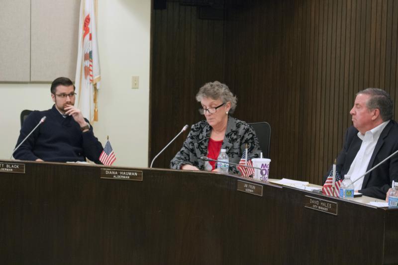 Alderwoman Diana Hauman discusses the bulk waste proposal.