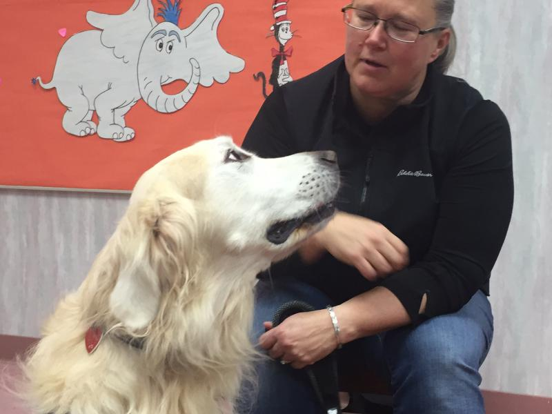 Be it Dr. Suess, J.K. Rowling or A.A. Milne, Harley the Golden Retriever is ready to listen.