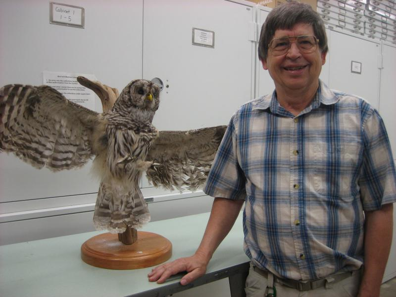 Angelo Capparella with barred owl from the Illinois State University specimen collection.