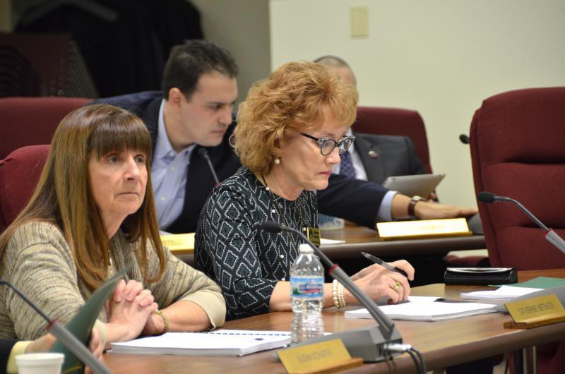 McLean County Board member Susan Schafer.
