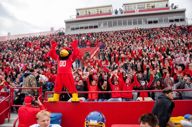 Reggie Redbird leads the excitement at Homecoming.