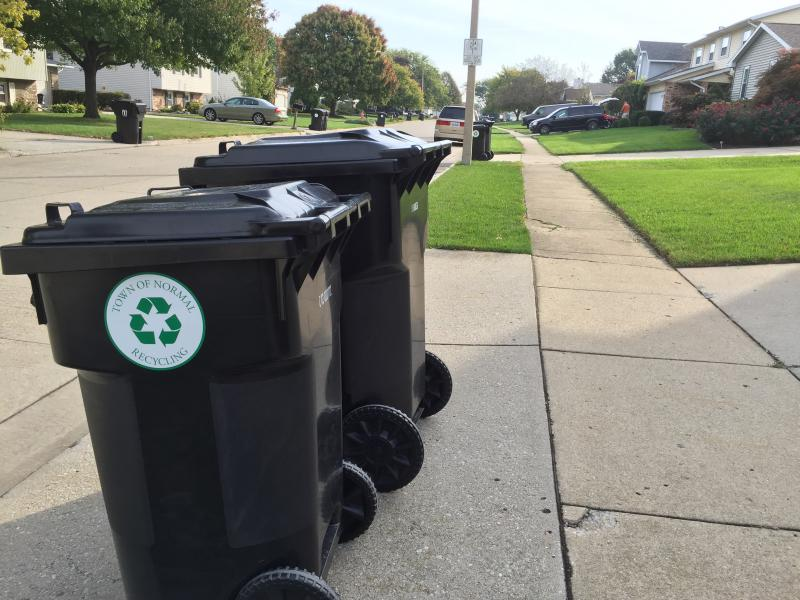 Recycling and garbage bins awaiting pickup in Normal.