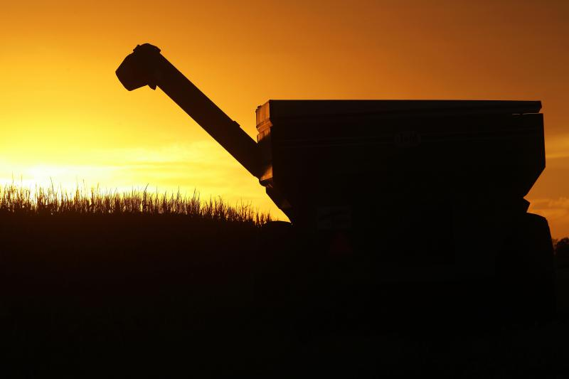 Central Illinois farmers harvest their corn crops as the sun sets in Petersburg.