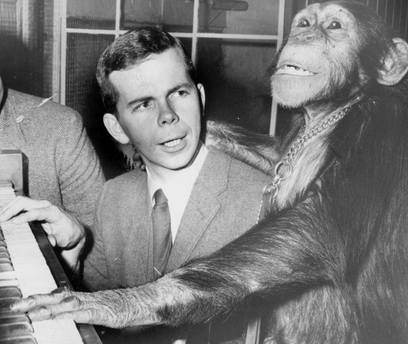 The Wurlitzer organ dealer in Eastland Mall gave Don and famed Miller Park Zoo chimp LaJean organ lessons as promotion in early 1970s, culminating in a concert and contest between the two of us at the Consistory (now the BCPA). LaJean won.