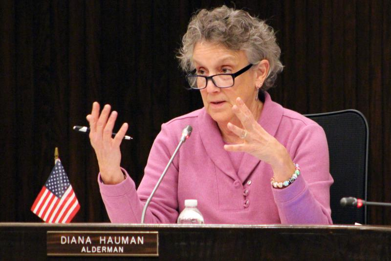 Alderman Diana Hauman during a recent Bloomington City Council meeting.