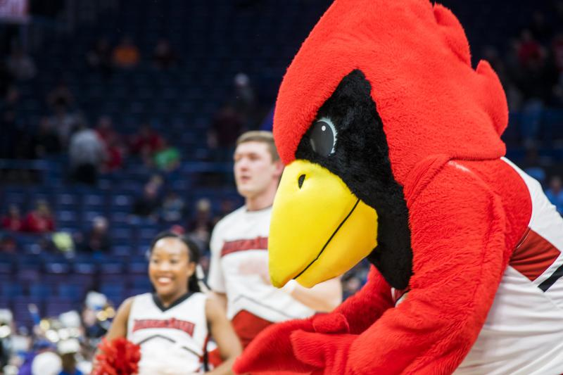 Reggie Redbird cheers for Illinois State Redbirds