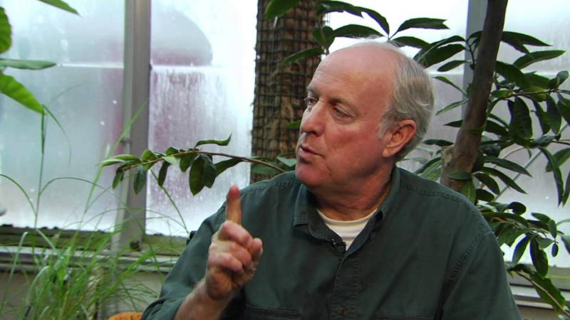 """Environmentalist Douglas Tallamy will speak on """"Creating Living Landscapes"""" at Heartland Community College on Tuesday in a program sponsored by Illinois Prairie Wild Ones, a native plant advocacy group."""