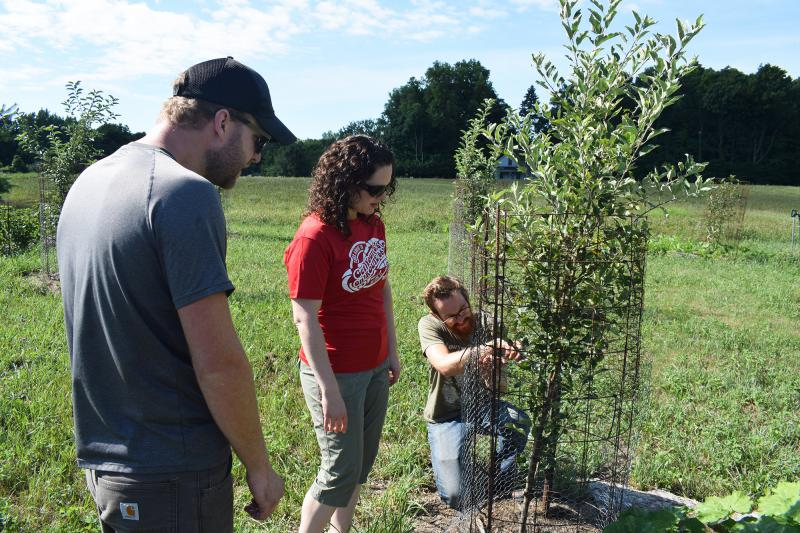 Jonathan Funk, Katie Funk, and Jeff Hake in their orchard at Funks Grove Heritage Fruits and Grains in rural Shirley.