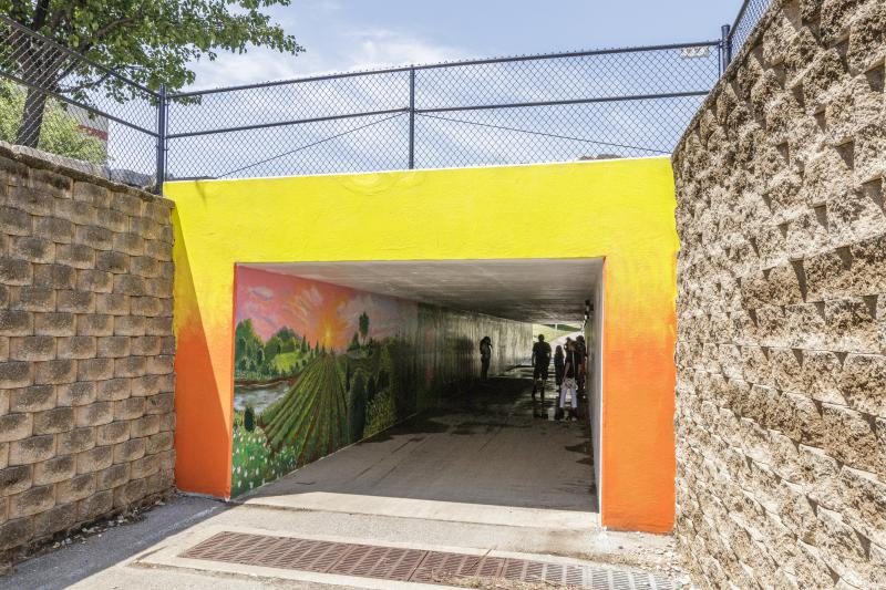 You can go and check out the mural for yourself. It's located in the Washington Street bridge tunnel near Atwood-Wayside Herb Garden in Bloomington.