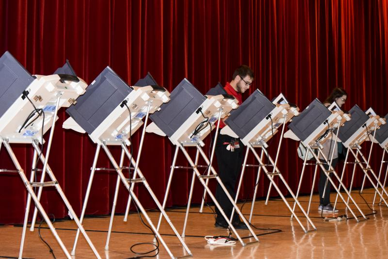 Voter at a precinct