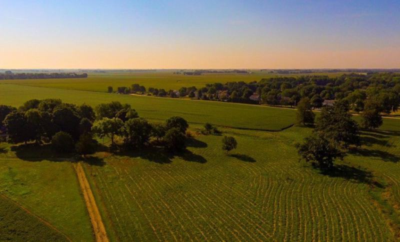 McLean County fields.