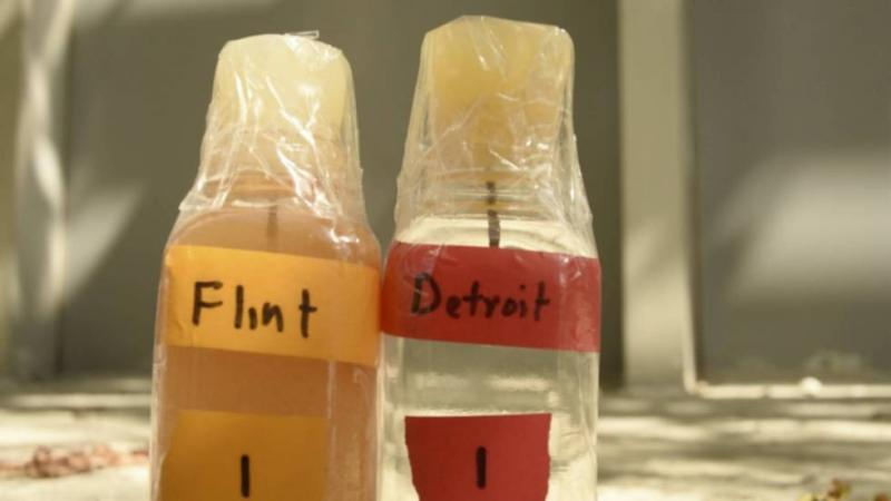 flint water comparison