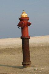 A fire hydrant stands as a stark reminder of Dauphin Island's massive erosion.
