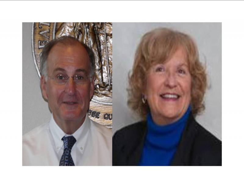 Candidates for State House District 19:  