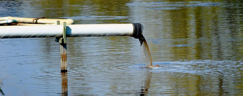 a pipe discharging hog waste into a lagoon