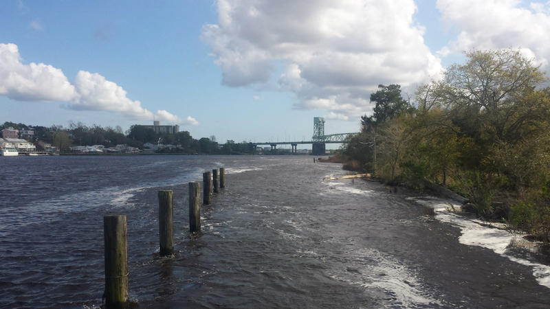 Looking south along the Cape Fear River near the proposed development.