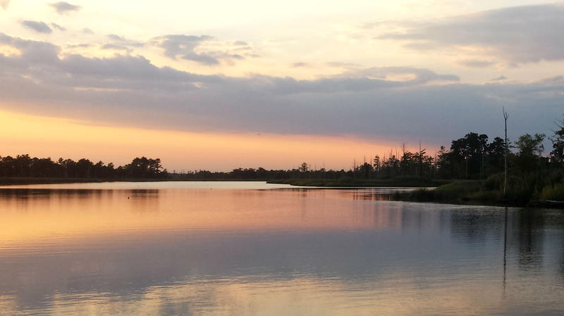 The Cape Fear River near Wilmington, 100 miles down from the Cehmours plant.