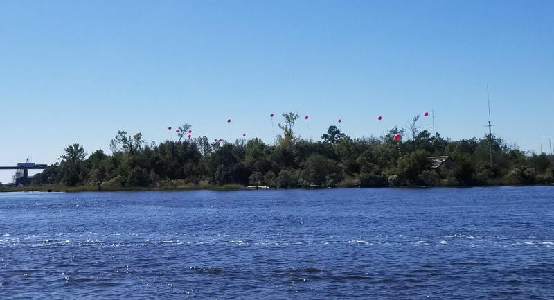 The big red balloons floating along the river just downstream from the USS North Carolina have a purpose.  They show the heights of a series of buildings that a developer is proposing for that piece of property.