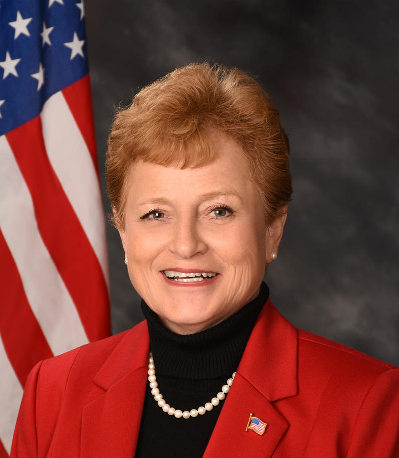 North Carolina House District 17 makes up much of Brunswick County. Current Republican Representative Frank Iler is facing challenger Patricia Sykes in the May Primary.