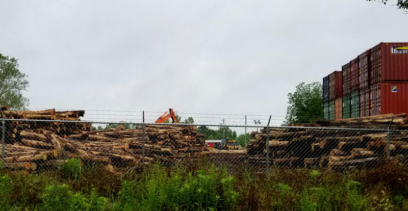 Logs await loading into shipping containers at Malec Brothers.