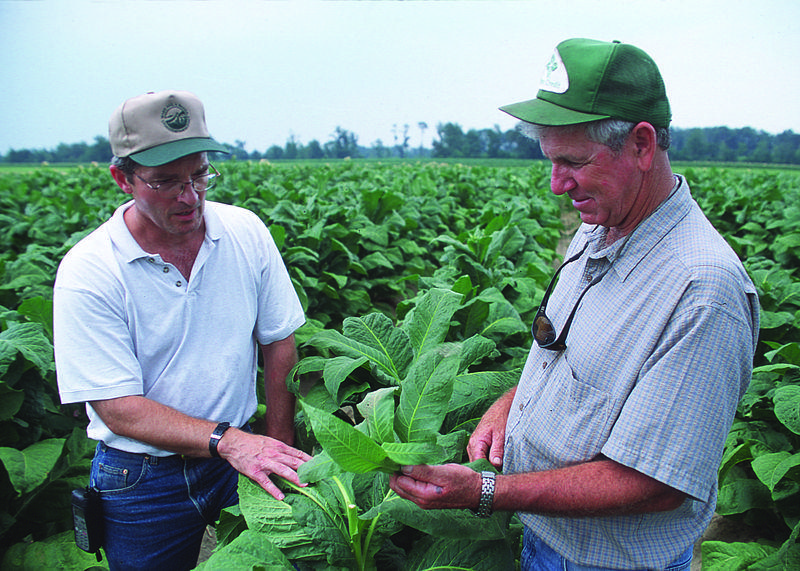 USDA District Conservationist with tobacco farmer in North Carolina