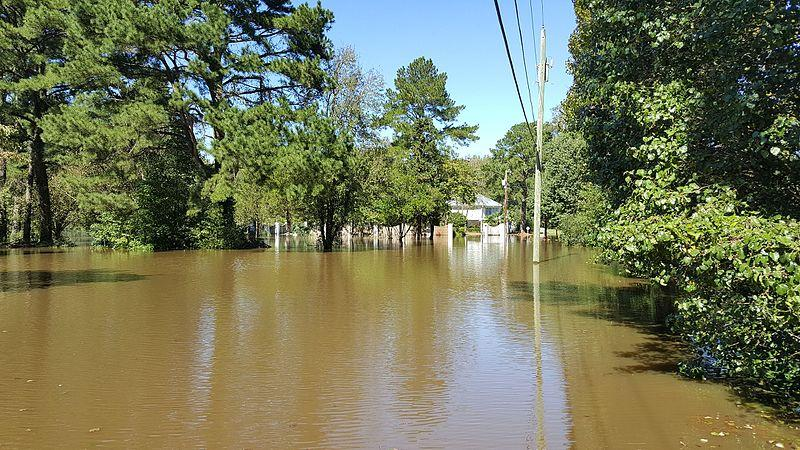 In the aftermath of Hurricane Matthew, floodwater from the Tar River is well overflowing its southern bank. The river is cresting at about 20 feet.