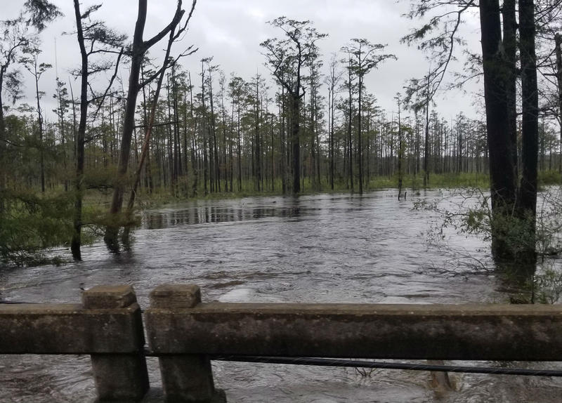 This week the flood waters from Hurricane Florence should begin receding. Those waters contain more waste today, than they did two weeks ago.
