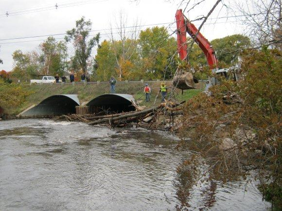 Pulling Trees from Culvert on Boardman River
