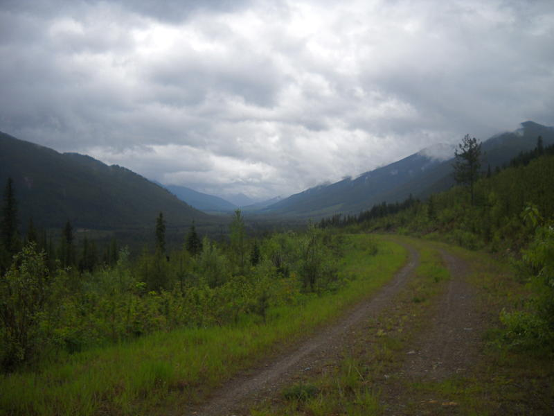 A two track trail somewhere in the Canadian section of the Great Divide Mountain Bike Route