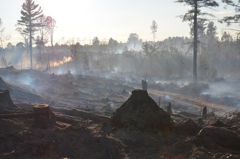 Some of the roughly 70 acres burned in Marquette County fire Thursday, July 30.