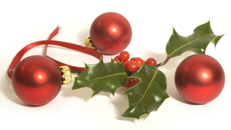 A variety of plants play a large role in Christmas traditions around the world.