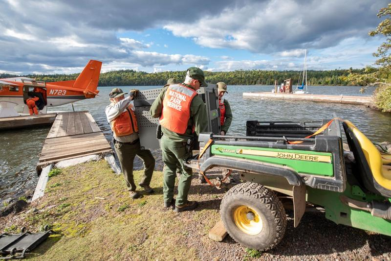 NPS staff unload a crated wolf from a USFWS aircraft.