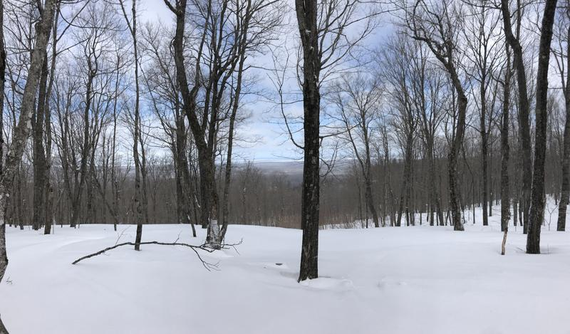 From the top of a mountain, a snowy landscape with trees reveals a view of Lake Superior in the distance.