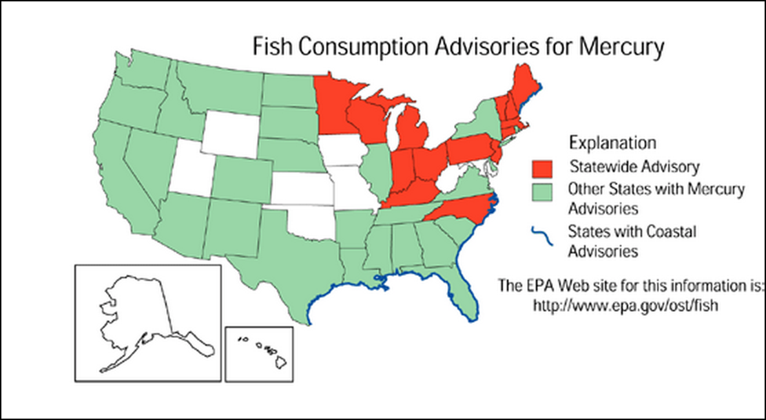 State updates guide for safely eating fish from michigan for Mercury in fish list