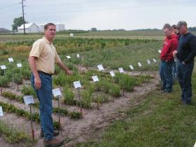 Dr. Win Phippen at a pennycress field day at the WIU research farm on 6-6-2013