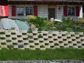 """A """"green wall,"""" a technique used in sustainable landscaping."""