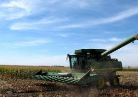 The Friesens of Henderson, Neb., have 1,100 acres of corn to harvest, part of 97 million acres of corn to be picked across the country.